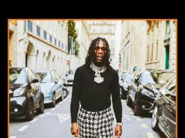 Burna Boy - Twice As Tall Album