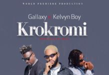 Gallaxy - Krokromi Ft. Kelvyn Boy