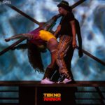 Download: Tekno – Amaka