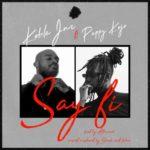 Download: Kobla Jnr Ft. Pappy KoJo – Say Fi (Prod. By Nova)