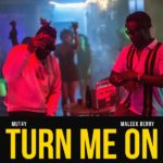 Download: Mut4y Ft. Maleek Berry – Turn Me On
