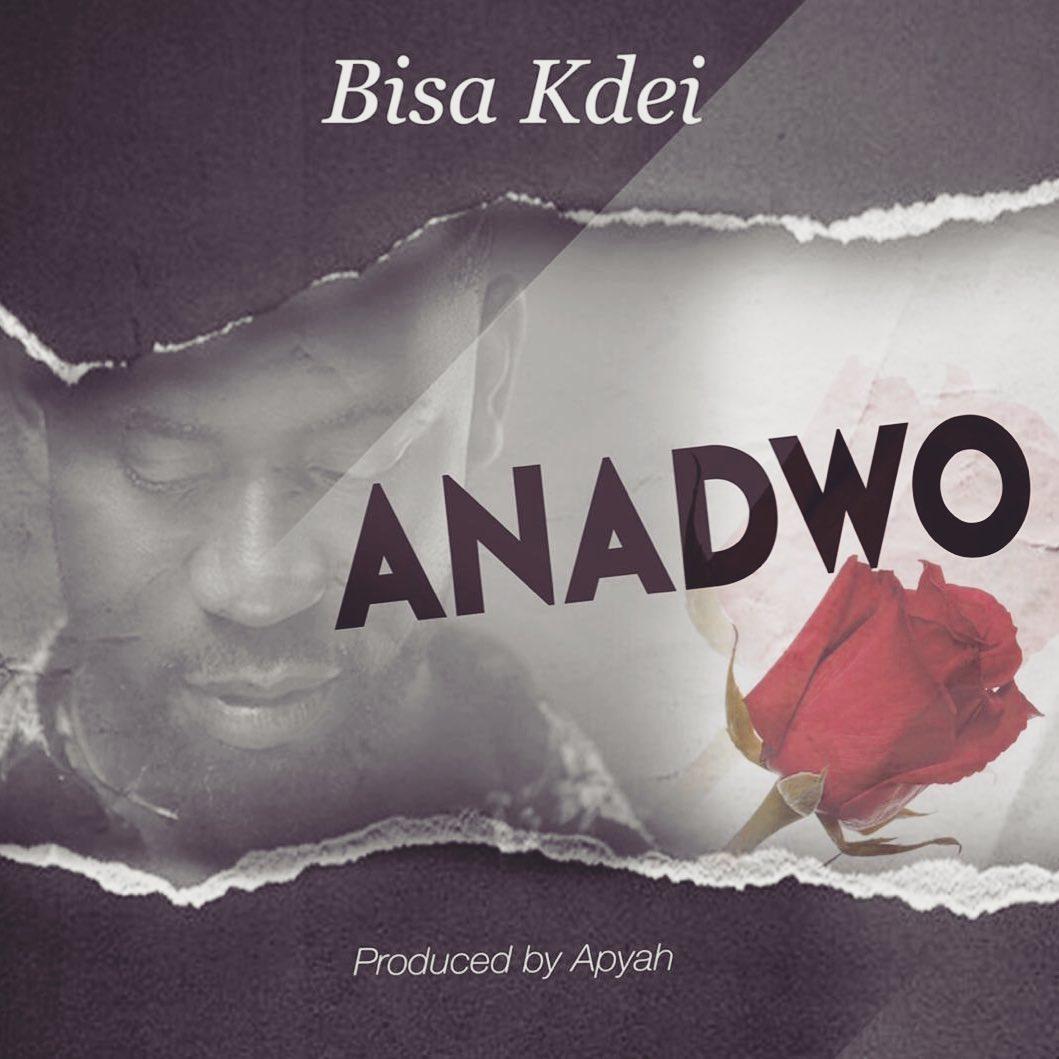 Download: Bisa Kdei – Anadwo