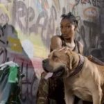 Watch/Download: Wendy Shay – Kut It (Official Music Video)