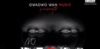 Qwadwo Wan - No Fears
