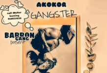 Mr. Akokor Boozing - Akokor Gangster (Prod. By Ntim Beatz)