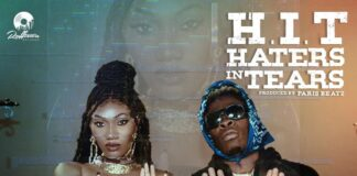 Wendy Shay - Haters In Tears Ft Shatta Wale