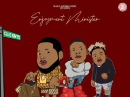 D-Black Ft. Stonebwoy x Quamina Mp - Enjoyment Minister