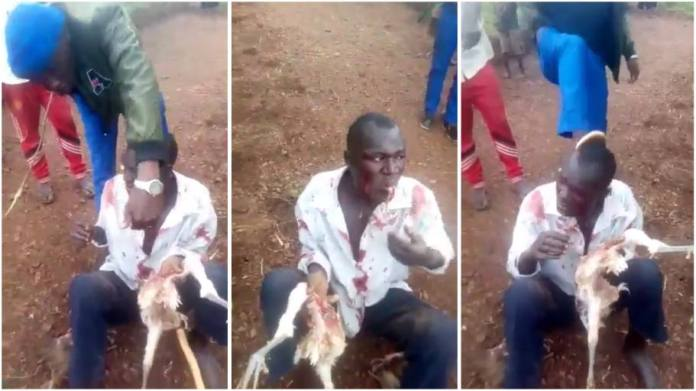 Man forced to eat live chicken after he was caught stealing [video]