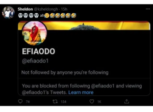 Efia Odo Blocks Kwadwo Sheldon On Twitter- The YouTuber Reacts