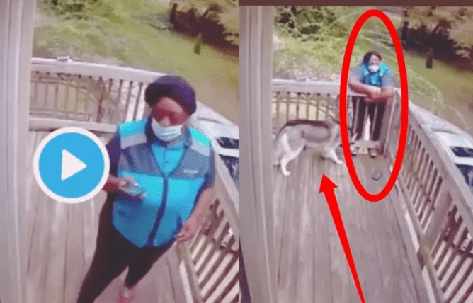 See What A Security Camera Caught A Lady Doing After She Saw A Dog (Watch Video)