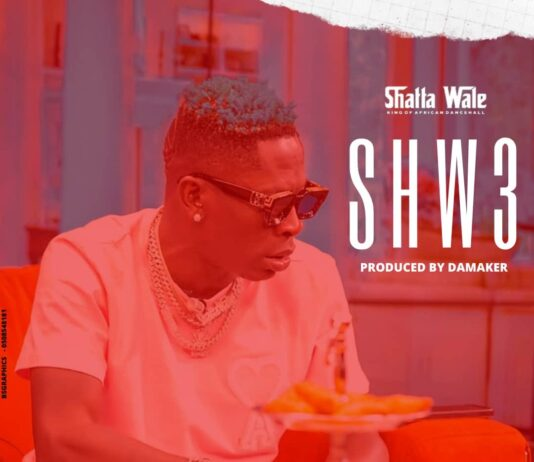 Shatta Wale - Shw3