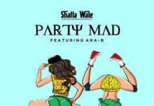 Shatta Wale - Party Mad Ft. Ara B