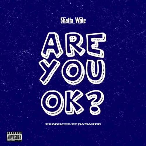 Shatta Wale - Are You Ok
