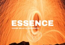 Ypee - Essence (Cover)
