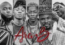 Ara-B - The Big 5 (Free Wale)