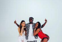 Celina Sharma Ft Stonebwoy & Ivorian Doll - Lights Down